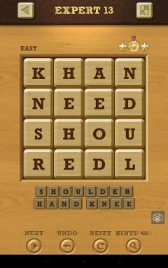 Words Crush Easy Expert Level 13