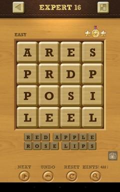 Words Crush Easy Expert Level 16