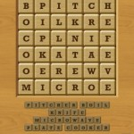 Words Crush Variety Step by Step Level 14