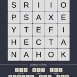 Mind The Word Level 11 Puzzle 26