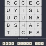 Mind The Word Level 12 Puzzle 26