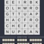Mind The Word Level 14 Puzzle 13