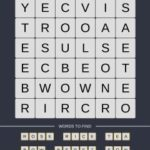 Mind The Word Level 14 Puzzle 15