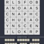 Mind The Word Level 14 Puzzle 16
