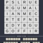 Mind The Word Level 14 Puzzle 27