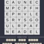 Mind The Word Level 17 Puzzle 10