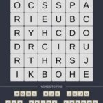 Mind The Word Level 17 Puzzle 13