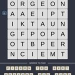 Mind The Word Level 18 Puzzle 23