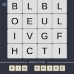Mind The Word Level 6 Puzzle 26