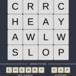 Mind The Word Level 8 Puzzle 2