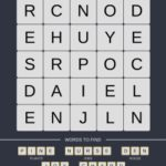 Mind The Word Level 9 Puzzle 12