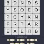 Mind The Word Level 9 Puzzle 13
