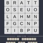Mind The Word Level 9 Puzzle 22