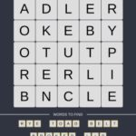 Mind The Word Level 9 Puzzle 25