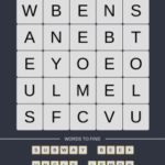 Mind The Word Level 9 Puzzle 28