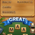 Word connect level 1141
