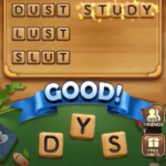 Word connect level 1335